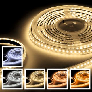 LED-Flex-Strip IP68 600 Mono 5m
